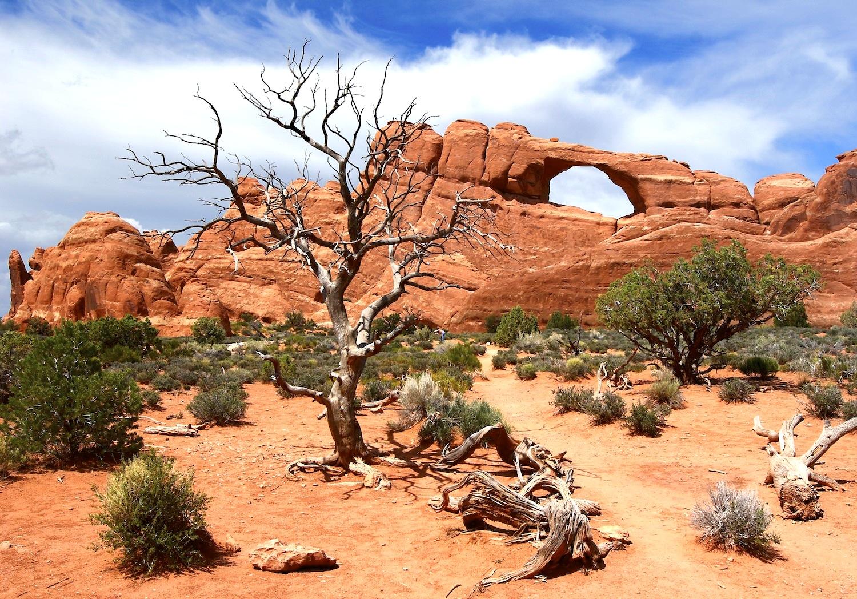 Skyline Arch dans Arches National Park-Utah