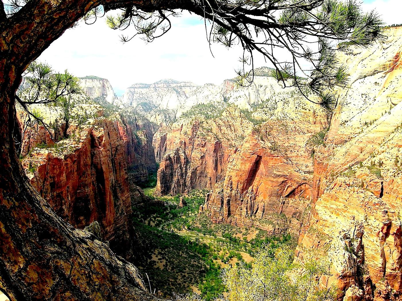 La vallée principale de Zion depuis Angel's Landing