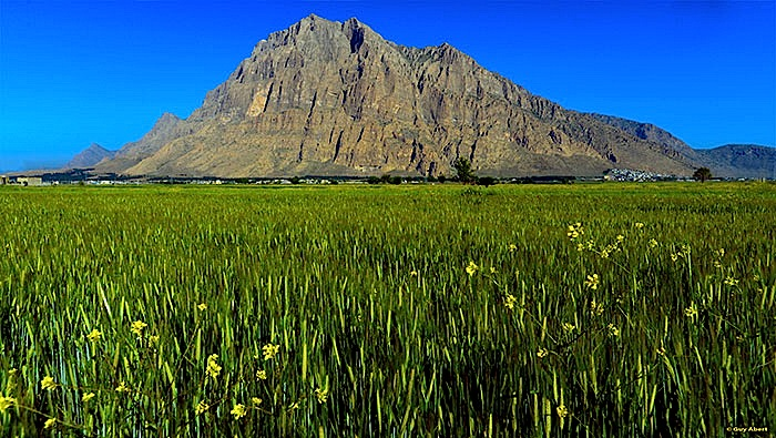 L'énorme montagne du Bisotoun, près de Kermanshah - dans le Kurdistan iranien (photo www.Guy Abert.fr)